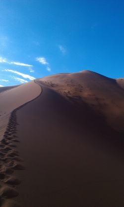The Crazy Dune