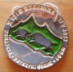Medal from Butcher's Race